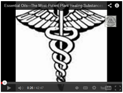Essential Oils---The Most Potent Plant Healing Substances Available!